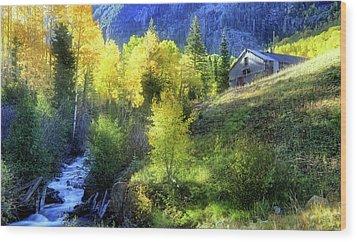 Autumn In Ophir - Colorado - Aspens Wood Print by Jason Politte