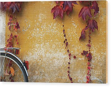 Wood Print featuring the photograph Autumn In Red by Yuri Santin