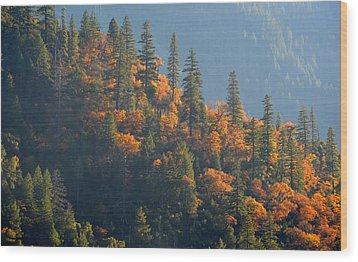 Autumn In The Feather River Canyon Wood Print by AJ Schibig