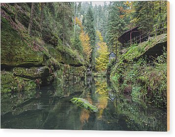 Autumn In The Kamnitz Gorge Wood Print