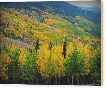 Autumn In The Rockies Wood Print