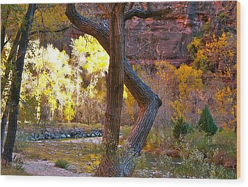 Autumn In Zion Wood Print