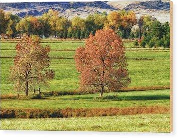 Autumn Landscape Dream Wood Print by James BO  Insogna