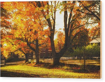 Wood Print featuring the photograph Autumn Lane by Robert Clifford