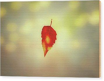Autumn Leaf Wood Print by Bob Orsillo