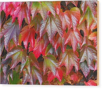 Autumn Leaves 01 Wood Print
