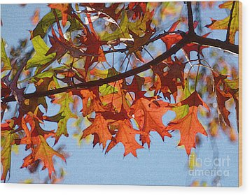 Autumn Leaves 16 Wood Print by Jean Bernard Roussilhe