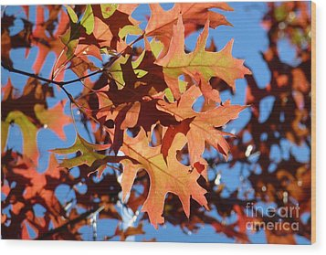 Autumn Leaves 17 Wood Print by Jean Bernard Roussilhe
