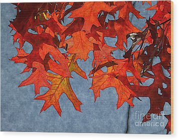 Autumn Leaves 19 Wood Print by Jean Bernard Roussilhe