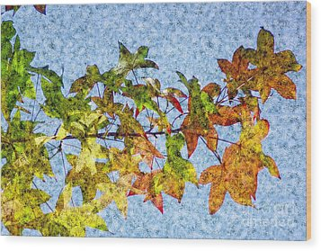 Wood Print featuring the photograph Autumn Leaves 2 by Jean Bernard Roussilhe