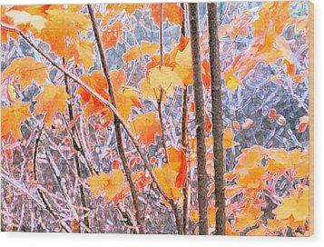 Wood Print featuring the digital art Autumn Leaves 2 Pdae by Lyle Crump