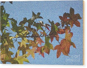 Wood Print featuring the photograph Autumn Leaves 3 by Jean Bernard Roussilhe