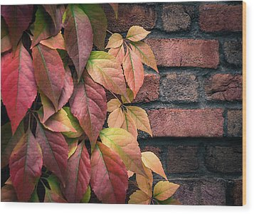 Wood Print featuring the photograph Autumn Leaves Against Brick Wall by Julie Palencia