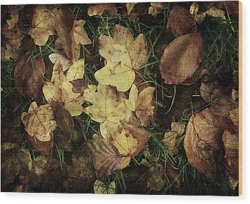 Autumn Leaves Are Falling Down... Wood Print