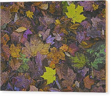 Autumn Leaves At Side Of Road Wood Print by John Hansen