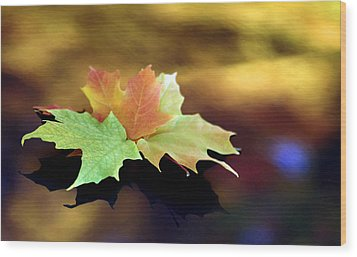 Autumn Leaves  Wood Print by Dmitriy Margolin