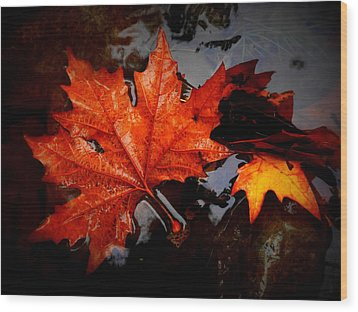 Autumn Leaves In Tumut Wood Print by Lexa Harpell