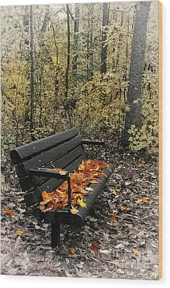 Wood Print featuring the photograph Autumn Leaves On A Bench by Dan Carmichael