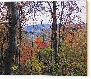 Autumn Leaves On Blue Ridge Parkway Wood Print