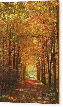 Autumn Light And Leaf Painting Wood Print