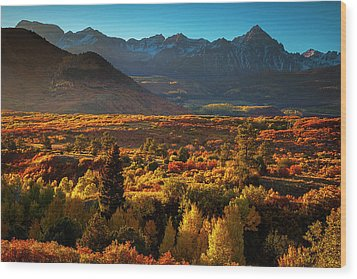 Wood Print featuring the photograph Autumn Light by Andrew Soundarajan