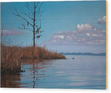 Autumn Marsh Reeds Wood Print