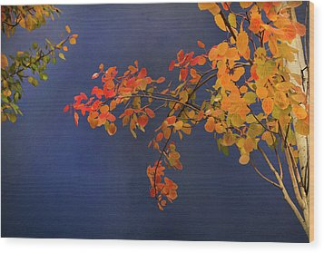 Wood Print featuring the photograph Autumn Matinee by Theresa Tahara