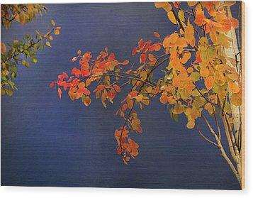 Autumn Matinee Wood Print by Theresa Tahara