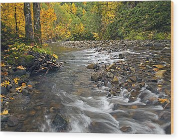 Autumn Meander Wood Print by Mike  Dawson