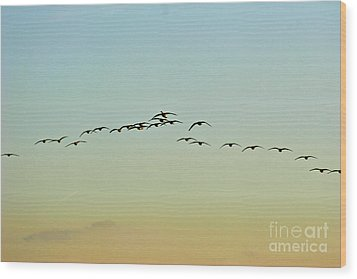 Autumn Migration Wood Print