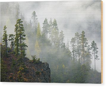 Autumn Mist Wood Print by Mike  Dawson