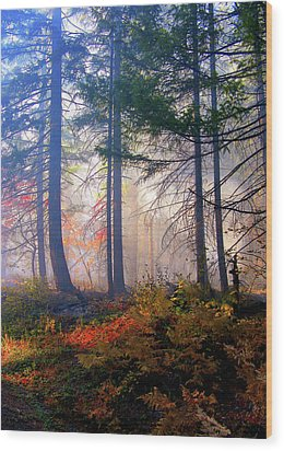 Autumn Morning Fire And Mist Wood Print