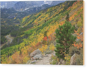 Wood Print featuring the photograph Autumn On Bierstadt Trail by David Chandler