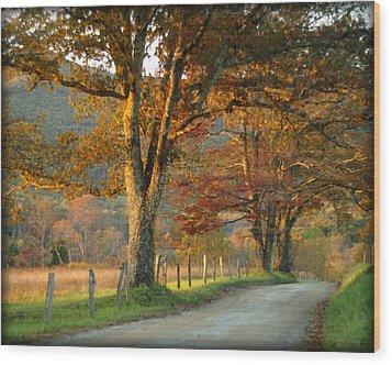 Autumn On Sparks Lane Wood Print by TnBackroadsPhotos