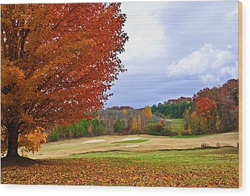 Wood Print featuring the photograph Autumn On The Golf Course by Susan Leggett