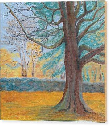 Autumn On The Preserve Wood Print by Paula Emery