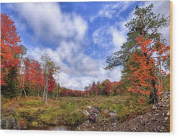 Wood Print featuring the photograph Autumn On The Stream by David Patterson