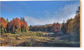 Wood Print featuring the photograph Autumn Panorama At The Green Bridge by David Patterson