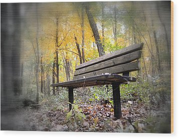 Autumn Park Bench Wood Print by Bonfire Photography