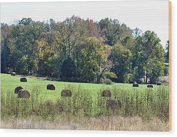 Autumn Pastures Wood Print by Jan Amiss Photography