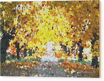 Autumn Path Wood Print by Don Phillips
