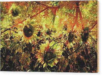Autumn Wood Print by Paul Drewry