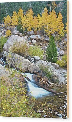 Wood Print featuring the photograph Autumn Peace by Gary Lengyel