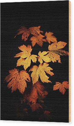 Autumn Photo Wood Print