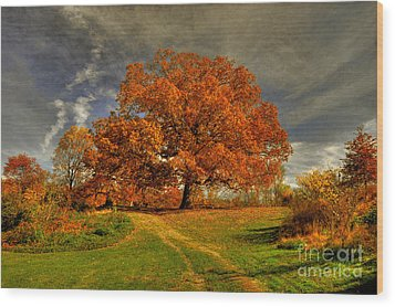 Autumn Picnic On The Hill Wood Print by Lois Bryan