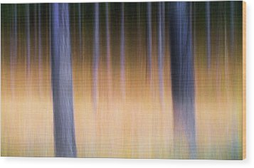 Wood Print featuring the photograph Autumn Pine Forest Abstract by Dirk Ercken