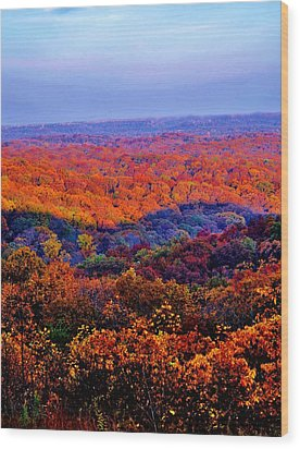 Autumn Rainbow Wood Print