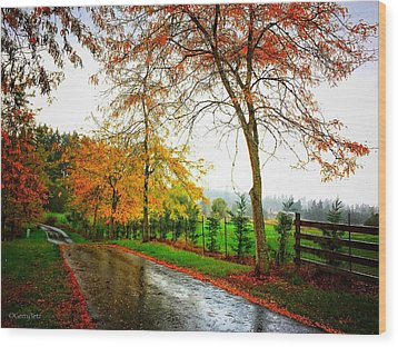 Autumn Rains Wood Print