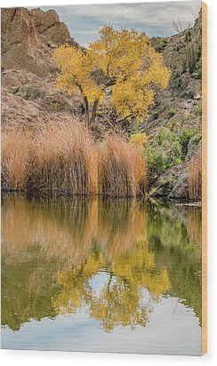 Autumn Reflection At Boyce Thompson Arboretum Wood Print