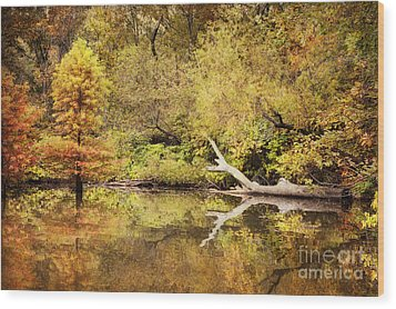 Autumn Reflection Wood Print by Cheryl Davis